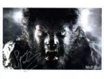 Spencer Wilding from The Wolfman Hand signed 8 by 10
